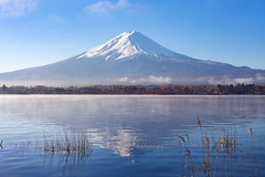 Kawaguchiko Lake in Autumn (Japan) - Mt. Fuji and reflection in the lake with blue sky. (baddoguy) Tags: asia autumn awe backgrounds beauty in nature blue clear sky color image cone copy space famous place fujikawaguchiko horizontal international landmark japan lake kawaguchi local majestic morning mountain peak mt fuji national nonurban scene outdoor pursuit outdoors photography reed grass family reflection satoyama scenery scenics snow snowcapped sunny symmetry tourism tranquil tranquility travel destinations viewpoint volcano water yamanashi prefecture
