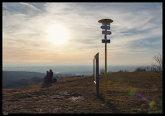 Roz 2019 (2) (***RM***) Tags: czechrepublic moravia zidlochovice country nature walk winter february nikon d850 nikkor 2470mm