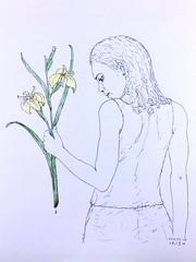 IrisV2b (Alex Hiam) Tags: iris girl outdoors nature plant flower drawing art portrait sketch pencil yellow hand figure botanical illustration children composition