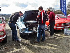 ~Mustang men of Great Britain.. (John(cardwellpix)) Tags: sunday 17th march 2019 mustang gt 500 owners club great britain newlands corner guildford surrey uk