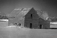 Little Old House On The Prairie (Sybaristail of Sybaristail Photo & Art) Tags: abandoned alberta canada cold house icy nikon photo pioneer pioneers snow winter abandonedbuilding abandonedhouse abandonedplace abandonedplaces blackandwhite blackandwhitephotography monochromatic monochrome photography rural ruralphotography urbanphotography urbex albertacanada nikonphotography monochromephotography canadianphotographer nikonphotographer ruralcountryside
