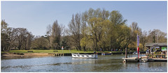 The Wick Ferry (clive_metcalfe) Tags: ferry boat river wick christchurch dorset uk riverstour trees spring crossing flag jetty