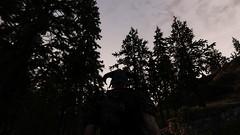 Trees at sundown (Flóki_Vilgerðarson) Tags: skyrim sse intrigued enb obsidian 3d trees plants