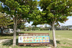 DSC00491 (Benson & LiLing) Tags: 沖繩
