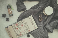 My things (Graella) Tags: planning planificador deskplanner calendario calendary arena sand piñas jersey flatlay winter hivern invierno overhead stilllife seasonsmydiary seasons things 52semanas libreta