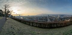 Morning mood at Höngg (jaeschol) Tags: europa europe kontinent schweiz suisse switzerland