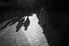 STRANGERS DARKER SIDE (ajpscs) Tags: ©ajpscs ajpscs 2019 japan nippon 日本 japanese 東京 tokyo city people ニコン nikon d750 tokyostreetphotography streetphotography street strangers urban urbanlife walksoflife tokyoscene anotherday monochromatic grayscale monokuro blackwhite blkwht bw blancoynegro blackandwhite monochrome lightshadow shadow strangersdarkerside shadowsoftokyo tokyoshadows日本