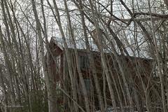 """You can`t see me here"" (lortopalt) Tags: hiding gömmer gömma abandoned övergivet övergivna hus house nikon d850"