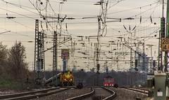 27_2019_02_06_Gelsenkirchen_Bismarck_1275_834_EH_mit_Sandzug ➡️ Herne_Abzw_Crange_6155_211_Rpool (ruhrpott.sprinter) Tags: ruhrpott sprinter deutschland germany allmangne nrw ruhrgebiet gelsenkirchen lokomotive locomotives eisenbahn railroad rail zug train reisezug passenger güter cargo freight fret bismarck akiem cww db de eh erd nrail pkpc rpool 0275 0632 1202 1203 1265 1275 5370 6155 6185 6186 6187 6189 6193 9263 9425 lkw captrain dortmundereisenbahn sandzug abzwcrange dortmund bottropsüd dorsten logo natur outdoor graffiti