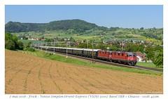Re 420 VSOE - Frick (CC72080) Tags: vsoe venisesimplonorientexpress orientexpress train re420 re44 zug frick sbb cff ffs