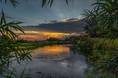 """In the """"Amazonian"""" twilight (piotrekfil) Tags: nature landscape sunset twilight dusk summer water river tree reflections clouds sky riverbank pentax poland piotrfil"""