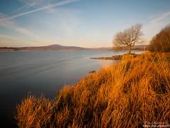 au bord du lac (Paul Kerrien) Tags: finistere bzh paysage matin poselongue campagne bretagne