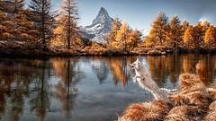 Schweiz - MATTERHORN - Lake Autumn (monte-leone) Tags: schweiz switzerland matterhorn zwielicht twilight sonnenuntergang suisse panorama skyline night bei nacht almhütten almrausch almabtrieb almdörfer alm almdorf dorf bernina bahn glacier express sankt moritz graubünden zermatt wengen grindelwald landscape landschaft gebirge schweizer berge bern basel zürich moritzsee jungfrau eiger nordwand lauterbrunnen lauberhorn mountain gebirgs blumen