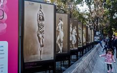 Like Vera Fokina (sapphire_rouge) Tags: 上野 uenopark ueno 上野公園 東京文化会館 ballerina tokyobunkakaikan poster ポスター girl