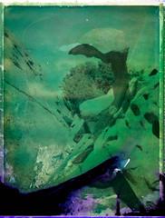 Stones 3  (FP100c negative) (mmartinsson) Tags: 2018 night modelp instantfilm fujifilm rocciadellorso longexposure negativescan negative 127mm epsonperfectionv700 mamiyasekor scan film mamiyauniversal mamiyasekorp bleached polaroid capodorso analoguephotography fp100c palau olbiatempio italien it