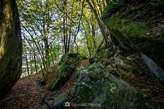 Paso ancho (SantiMB.Photos) Tags: 2blog 2tumblr 2ig lesplanesdhostoles garrotxa girona otoño autumn roquesencantades bosque forest rocas rocks geo:lat=4205268366 geo:lon=250462506 geotagged santfeliudepallerols cataluna españa esp
