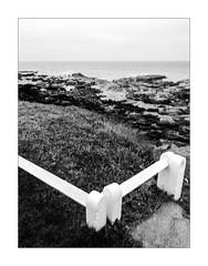 L'équerre ou comment réfréner l'appel du large. (Scubaba) Tags: europe france pasdecalais noirblanc noiretblanc bw blackwhite mer sea barrière fence