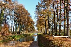 Grandcanal Kasteel Renswoude (Cajaflez) Tags: water canal grandcanal renswouder trees bomen autumn autun herbst herfst leaves bladeren fence hek