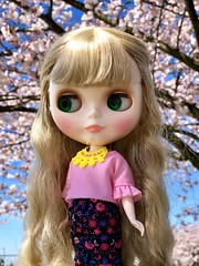 Sunday Best 💖 Cherry blossom time🌸 Claire enjoyed a family lunch of turkey salad and tomato rice soup. Ppl stared during her photo shoot but she was sure they were just admiring the blossoms. Barbie fashion (Painters Life) Tags: pink cherryblossoms barbiefashion takara blythe clearlyclaire