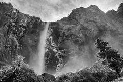 BRIDALVEIL FALL IN WINTER (tahitihut) Tags: csylviasanchez blackandwhite bridalveil fall yosemitenationalpark