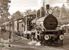 ex Queensland Rail steam train PB15 plate number 448 (Lance CASTLE) Tags: queenslandsteamtrain australiansteamtrain pb15 queenslandpioneersteamrailway heritagetrain steamtrain qgt qgr qr railways railroad ipswichqueensland swanbank4306 explore train locomotive railwayphotography buildplatenumber448