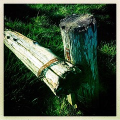 A bit of a barrier (Julie (thanks for 9 million views)) Tags: 100xthe2019edition 100x2019 image47100 wood post fence green hggt texture manmade slievecoilte mountain grass wexford ireland irish squareformat hipstamaticapp iphonese rusty hff