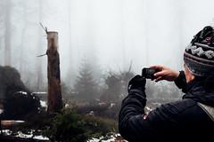 Fotografieren im Harz (Gruenewiese86) Tags: 2018 harz hütte november sony a6500 wald forest forestscape fog nebel angst tod tot geheimnisvoll mystisch mystical germany holz baum himmel landstrase