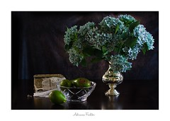 af1903_6637 (Adriana Füchter ... thank you for 9 Million Views) Tags: green springtime flower muscariarmeniacum naturamorta composition arrangement artwork creation poetic spectacular imagination winter fading fabric urn copper silver hellebore floralarrangement expressive explored панга ukraine photography artistic canon focus tabletop morte vegetais freshgardencucumber mangold swisschard bodegon nature plants photographie colori healthy vegetables alimento macro anavicor lateral oscuro dark aguacate membrillo tropical fruit avocado abacate naturezamorta stilllife interior photographers boots candid heritage photographs vintage retro antigo adrianafüchter flores hortências