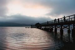 Bolinas Lagoon (wrenee.com) Tags: 2018 leicam6 portra400