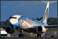 "N559AS Alaska Airlines ""Wild Alaska Seafood"" (Bob Garrard) Tags: n559as alaska airlines wildalaskaseafood salmon thirty boeing 737 anc panc"