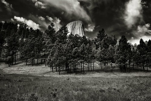 A Backdrop of Blue Skies and Clouds for Devils Tower (Bear Lodge, Black & White)