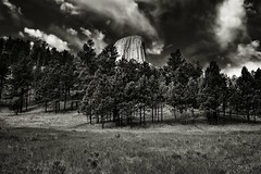 A Backdrop of Blue Skies and Clouds for Devils Tower (Bear Lodge, Black & White) (thor_mark ) Tags: 1558m 5112ft azimuth233 bearlodge bearlodgebutte bearlodgemountains bellefourchelittlemissouriarea blackwhite blackhills blueskies bluesskieswithclouds butte camranger capturenx2edited cloudwisps colorefexpro day8 devilstower devilstowernationalmonument evergreentrees evergreens grassland grassyarea grassyfield grassymeadow greatplains hillsideoftrees igneousrock imagecapturewithcamranger laccolithicbutte landscape lookingsw mixedgrassprairieecosystem nature nikond800e northamericaplains outside partlycloudy pinusponderosa ponderosapine prairiegrass prairiegrasses project365 redbedstrail rollinghillsides silverefexpro2 sunny trees triptodakotas triptodakotasandwyoming wyoming unitedstates