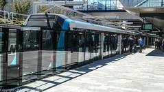 Sydney Metro - Metro trains at Cherrybrook (8) (john cowper) Tags: sydneymetro cherrybrook openday visitors trains metrosydneynorthwest transportfornsw infrastructure alstom suburbs sydney newsouthwales australia