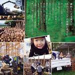 間伐材の有効利用の取組みの写真