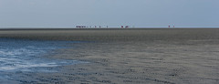 Mirage en baie du Mont Saint Michel (Giloustrat) Tags: normandie michel saint mont baie sable mirage horizon k70 pentax seascape france pentaxflickraward saariysqualitypictures
