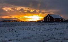 Winter Sunset (T L Sepkovic) Tags: landscape winter barn snow sunset goldenhour gettysburg destinationgettysburg rural country visitpa teamcanon canonusa 5dmkiv lenscoat
