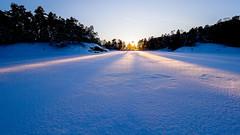 Kristallilahti, East-Helsinki, Finland. (Esa Suomaa) Tags: ice sunset winter helsinki sea finland suomi scandinavia trees forest olympusomd