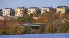 Lilla Essingen in Stockholm, Sweden 26/10 2015. (photoola) Tags: stockholm bro essingebron lillaessingen photoola sweden bridge höst autumn