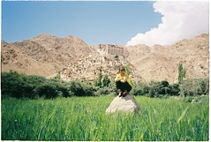 (grousespouse) Tags: ladakh 35mm analog film chemre monastery gompa himalayas tibet analogue landscape colorfilm canonautoboyii sureshot autoboy asia mountains clouds sky green dreamy dreamlike dreamscape travel colourfilm kodakcolorplus200 colorplus scanned croplab grousespouse 2018