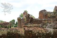 Angkor_Mebon Orientale_2014_21