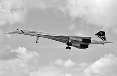 G-BOAF (stage1uk) Tags: gboaf aerospatialebritishaircraftcorporationconcorde 100016 britishairways londonheathrowairport