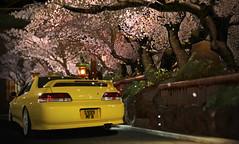 Photoshop Edit 3 (Nitin.Photography.) Tags: prelude preludesspec honda hondaprelude jdm japan cherry blossom import photography phoenixyellowprelude photoshop gt