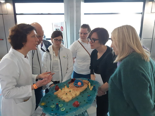 Relais2019Lux_Cancer-Research-Lab (20)