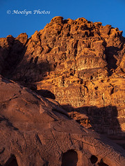 Valley of Fire - Late Afternoon (moelynphotos) Tags: valleyoffirestatepark statepark sandstone ancient mesozoicera eroded weathered vibrantcolor illuminated shadow clearsky mojavedesert desert nevada scenicsnature nature beautyinnature landscape southwestusa usa northamerica nopeople moelynphotos