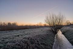 Leusden, The Netherlands (Pieter v/d Koppel) Tags: lanscape hdr nature icy winter nikon d7500 photography sunrise