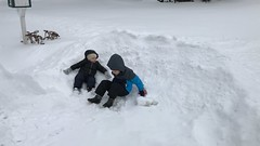 """Paul and Dani Make Snow Angels • <a style=""""font-size:0.8em;"""" href=""""http://www.flickr.com/photos/109120354@N07/31991081377/"""" target=""""_blank"""">View on Flickr</a>"""