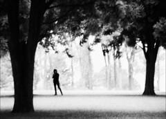 F_MG_6143-BW-Canon 6DII-Tamron 28-300mm-May Lee 廖藹淳 (May-margy) Tags: maymargy bw 黑白 人像 剪影 逆光 樹林 重複曝光 模糊 散景 街拍 線條造型與光影 天馬行空鏡頭的異想世界 心象意象與影像 幾何構圖 點人 台灣攝影師 南投縣 台灣 中華民國 taiwan repofchina fmg6143bw portrait doubleexposure blur bokeh woods trees 草原 meadow streetviewphotography taiwanphotographer humaningeometry humanelement mylensandmyimagination naturalcoincidencethrumylens nantoucounty canon6dii tamron28300mm maylee廖藹淳 linesformandlightandshadow