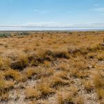 Saskatchewan Rangeland thumbnail