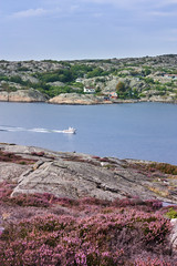 IMG_2384-1 (Andre56154) Tags: schweden sweden sverige himmel sky küste coast felsen heide boot boat