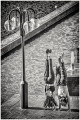 Topsy Turvy World (Andy J Newman) Tags: london monochrome street women barbican blackandwhite brutalistarchitecture candid d810 girls headstand londonphotographic meetup nikon silverefex young younggirls england unitedkingdom gb
